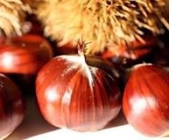 Gerrys feine Keschte-Traubensauce aus Südtirol